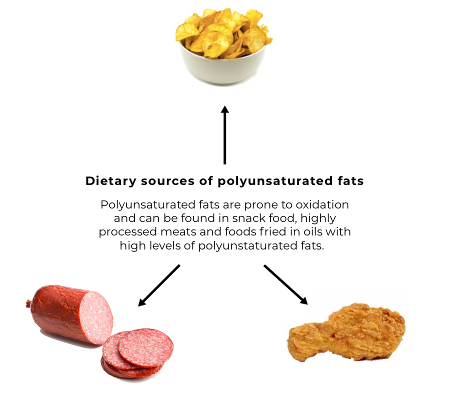 Polyunsaturated fats and hair loss